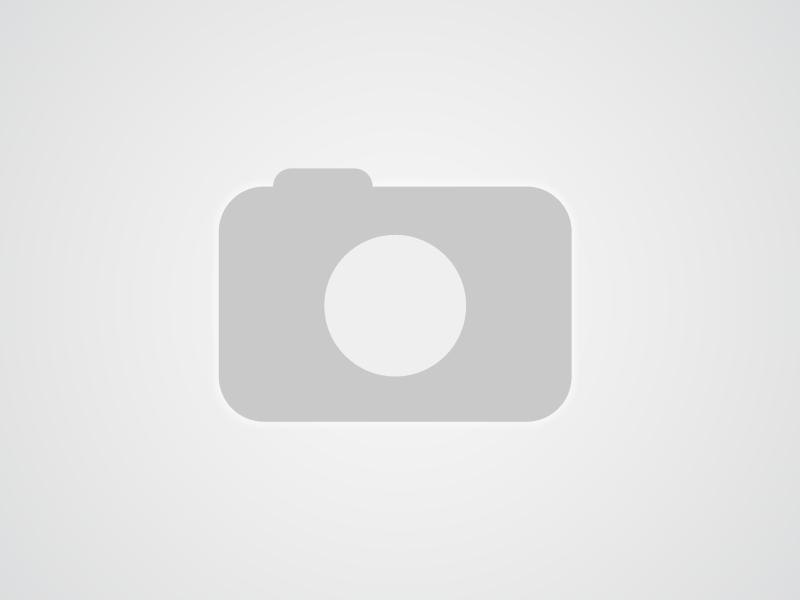 doamne cauta barbati pentru casatorie miercurea sibiului