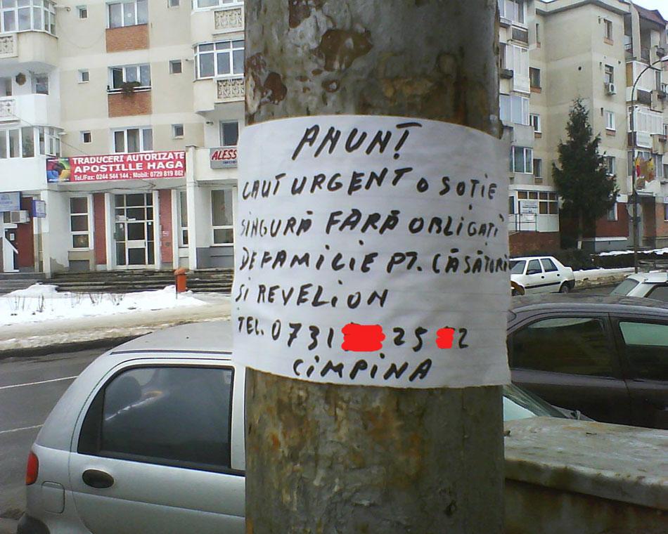 barbat bogat caut nevasta)
