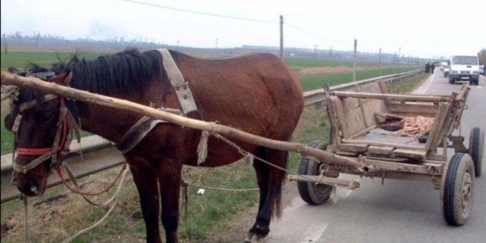 Un bărbat din Dumbrăveni a ajuns după gratii pentru că și-a bătut soția