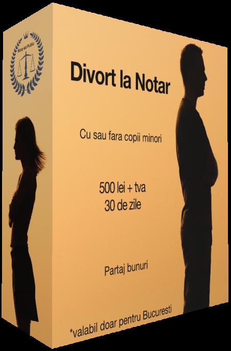 procedura de divort cu copil minor